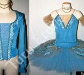 Blue Bird & Blue Tunic