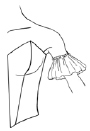sleeves-ruffle